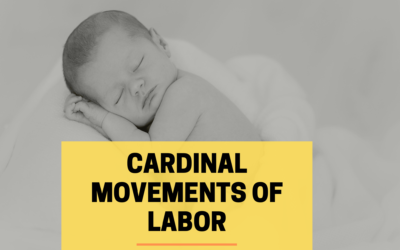 Cardinal Movements of Labor – What are 7 Steps?